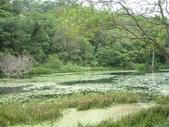 2008福山植物園:1797889848.jpg