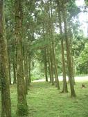 2008福山植物園:1797889840.jpg