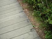 2008福山植物園:1797889851.jpg