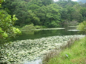 2008福山植物園:1797889838.jpg