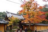 日本關西賞楓之旅DAY 5:034滋賀縣西明寺.jpg