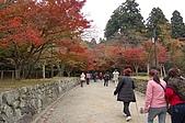 日本關西賞楓之旅DAY 5:011滋賀縣西明寺.jpg