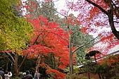 日本關西賞楓之旅DAY 5:022滋賀縣西明寺.jpg