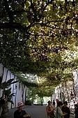 葡萄牙、西班牙之旅 4:04-027赫雷斯(Jerez)-雪莉酒莊.jpg