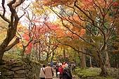 日本關西賞楓之旅DAY 5:015滋賀縣西明寺.jpg