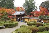日本關西賞楓之旅DAY 5:038滋賀縣西明寺.jpg