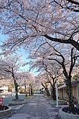 日本東北溫泉賞櫻 3:002岩手花卷溫泉.jpg