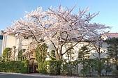 日本東北溫泉賞櫻 3:004岩手花卷溫泉.jpg