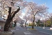 日本東北溫泉賞櫻 3:006岩手花卷溫泉.jpg