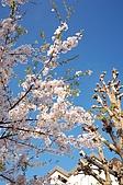 日本東北溫泉賞櫻 3:008岩手花卷溫泉.jpg