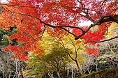 日本關西賞楓之旅DAY 5:017滋賀縣西明寺.jpg