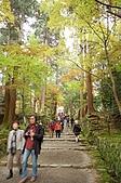日本關西賞楓之旅DAY 5:027滋賀縣西明寺.jpg