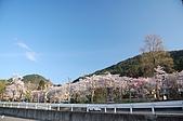 日本東北溫泉賞櫻 3:012岩手花卷溫泉.jpg