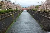 日本東北溫泉賞櫻 2:004山形天童倉津川.jpg