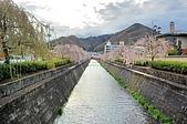 日本東北溫泉賞櫻 2:005山形天童倉津川.jpg
