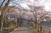 日本東北溫泉賞櫻 3:014岩手花卷溫泉.jpg