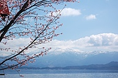 日本東北溫泉賞櫻 4:023秋田田澤湖.jpg