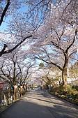 日本東北溫泉賞櫻 3:018岩手花卷溫泉.jpg