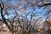 日本東北溫泉賞櫻 3:019岩手花卷溫泉.jpg