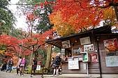 日本關西賞楓之旅DAY 5:033滋賀縣西明寺.jpg
