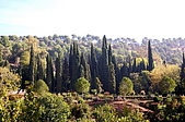 葡萄牙、西班牙之旅 6:06-131格拉那達(Granada)-阿爾罕布拉宮.jpg
