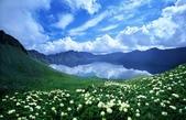 風景:4434589_1241198553k993.jpg