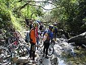 20051029沙溪大社環線:前面又有倒樹