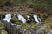 07.11.14.北海道.羊蹄湧水公園:比較上面的湧水區