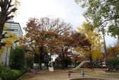 08.11.25.平安神宮:附近的公園
