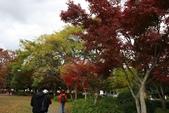 08.11.25.平安神宮:公園