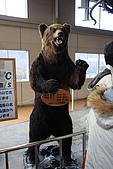 07.11.15.北海道.熊牧場:搭車處放的demo用的熊