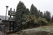 07.11.15.北海道.昭和新山:樹上已經有一層看得見的積雪了