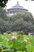 [110710]植物園賞荷之旅:植物園