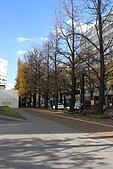 07.11.16.北海道.舊道廳:街景隨拍