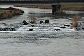 07.11.16.北海道.印第安水車公園:湍湍溪水