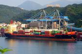 陽明海運船隊:AMALIA C_艾美莉雅