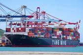 陽明海運船隊:YM UNICORN_營明