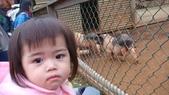 最珍貴的寶貝:1474006076.jpg