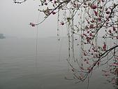 騎自行車遊西湖:05.JPG