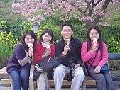 20070302伊豆賞櫻五日遊:走累啦~坐下來吃櫻花口味滴冰淇淋