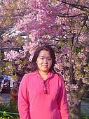 20070302伊豆賞櫻五日遊:人比花嬌啦~