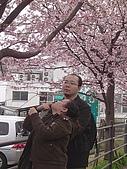 20070302伊豆賞櫻五日遊:不給拍~我就是要拍咩