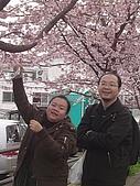 20070302伊豆賞櫻五日遊:糟啦~被發現...
