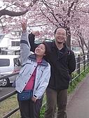 20070302伊豆賞櫻五日遊:換我也拍一張