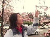 20070302伊豆賞櫻五日遊:我可以再靠近一點