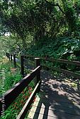 北部景點:DSC_0117台北-自來水博物館步道-木板棧道.jpg
