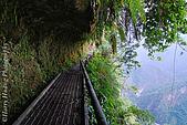 東部景點:DSC_0646花蓮瓦拉米步道-八通關古道-玉山國家公園.JPG