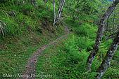東部景點:DSC_0675花蓮瓦拉米步道-八通關古道-玉山國家公園.JPG