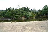 2010京阪神奈之旅奈良東大寺:2010-0830-1-030.JPG