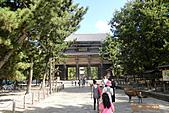 2010京阪神奈之旅奈良東大寺:2010-0830-1-001.JPG